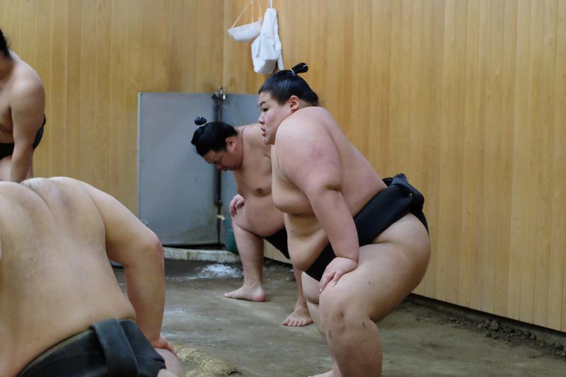 Sumo, Kitanoumi-beya, Koto-ku, Tokyo